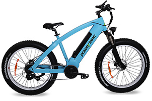 Fat Bike ELEMENT[S]